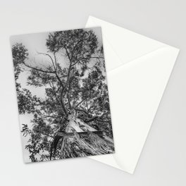 The old eucalyptus tree Stationery Cards