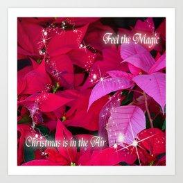 Christmas Poinsettia Photo Design Art Print