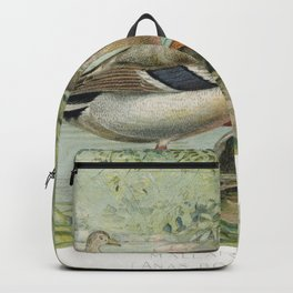 Mallard Duck (Anas Boschas) Male illustrated by JL Ridgway (1859-1947) and WB Gillette (1864-1937) f Backpack