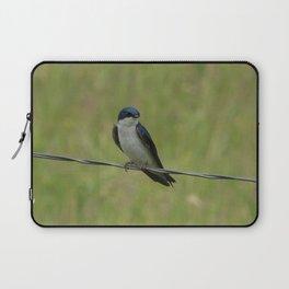 Tree Swallow Laptop Sleeve