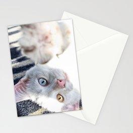 Beautifully Odd  Stationery Cards