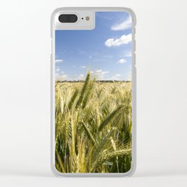 field with green rye Clear iPhone Case
