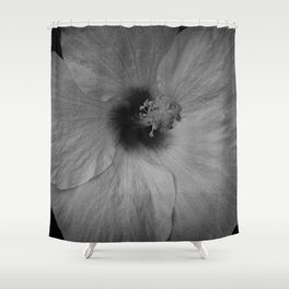 Hawaiian Dreams in Black and White  Shower Curtain