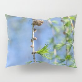 Young larch - Nature photography Pillow Sham