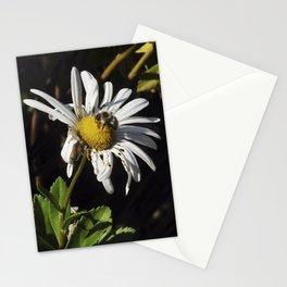 ambivalence daisy Stationery Cards