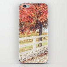 Autumn at the Orchard iPhone & iPod Skin