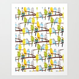 Watercolour Budgie Pattern Art Print