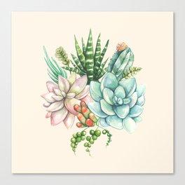 Succulent and Cactus Galore - Pastel Pink Canvas Print