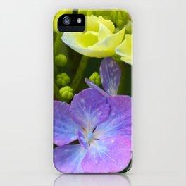 Hydrangeaceae iPhone Case