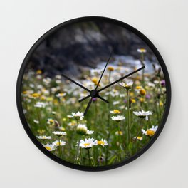Flowers of daisies in the countryside at sunset Wall Clock