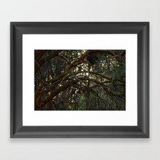 Mystic Arch Framed Art Print