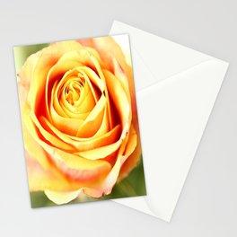 Rose For You #decor #society6 #buyart Stationery Cards