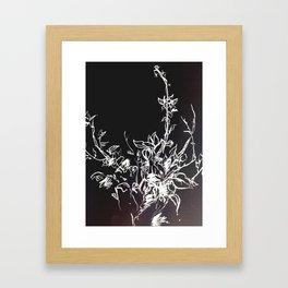 Lonely Bud Invert Framed Art Print