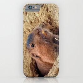 Botta's Pocket Gopher iPhone Case