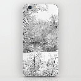 Winter Snow At Huron River iPhone Skin