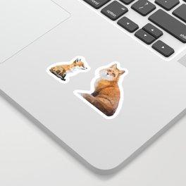 Fox Tenderness Sticker