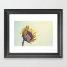 Sunny Sunflower Framed Art Print