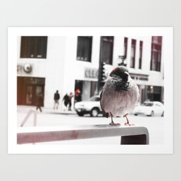 Bird in the City Art Print
