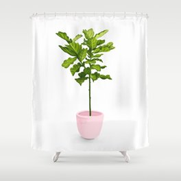 Fiddle Leaf Fig Plant Shower Curtain