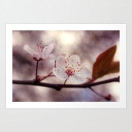 Beginning of Spring Art Print