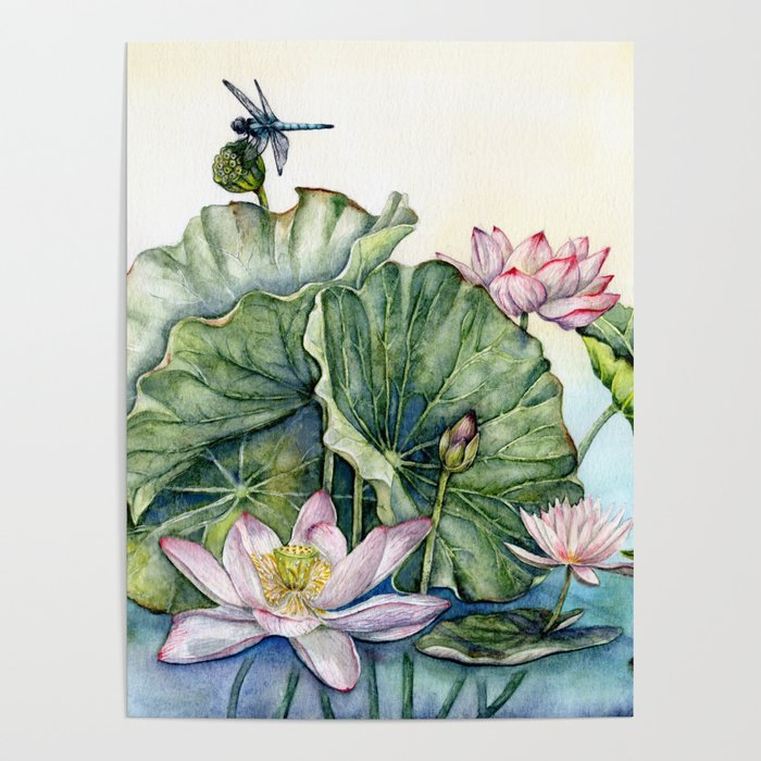 Japanese Water Lilies And Lotus Flowers Poster By Evgeniya Society6