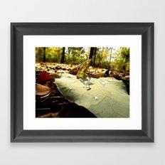 A bug's view Framed Art Print
