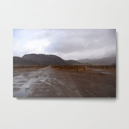 After the Desert Rain Metal Print