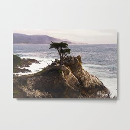 Coastal View of a Lone Cypress Tree, Seventeen Mile Drive, Monterey Peninsula, California Metal Print