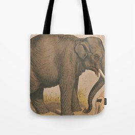 Vintage Elephant Illustration (1874) Tote Bag
