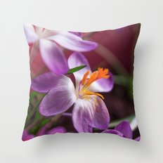 Crochi Throw Pillow