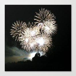 Fireworks House Canvas Print