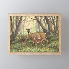 Whitetail Deer Doe and Cute Twin Fawns Framed Mini Art Print
