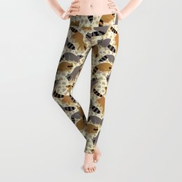 Adorable Racoon Friends, Animal Pattern in Nature Colors of Grey and Brown with Paw Prints Leggings