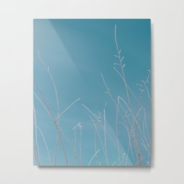 Frosty nature Metal Print