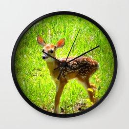 FAWN : Real Life Bambi Wall Clock