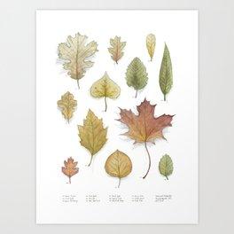 Autumnal Cartography Art Print