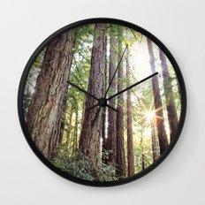 Sunlight Through Redwoods Wall Clock