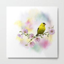 Digital Painting of  American Goldfinch  on the flowers Metal Print