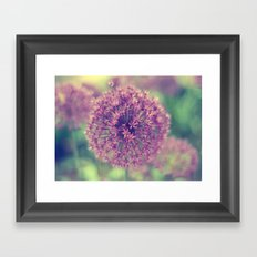 Tiny Miracles Framed Art Print
