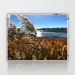 Marshfield Sound Laptop & iPad Skin