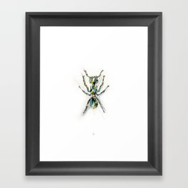 Insect Series - Ant Framed Art Print