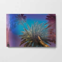 Blue Sky and Palm Trees Metal Print