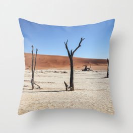 DeadVlei Barren Landscape Throw Pillow