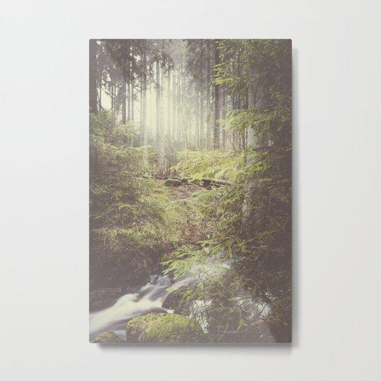 The paths we wander III Metal Print