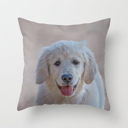 Young Golden Retriever breed dog with light fur stares into your eyes Throw Pillow