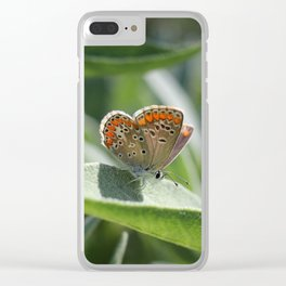Brown Argus butterfly on Sage Leaf Clear iPhone Case