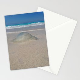 the Gilly fish northern coast of Egypt Stationery Cards
