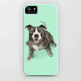 Hug a Staffie iPhone Case