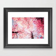Color Drama I Framed Art Print