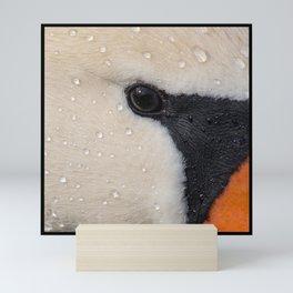 Mute Swan in Winter - CloseUp Mini Art Print